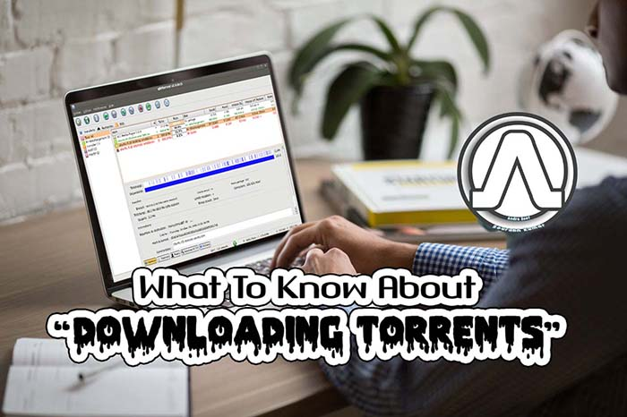 What To Know About Downloading Torrents We Observed