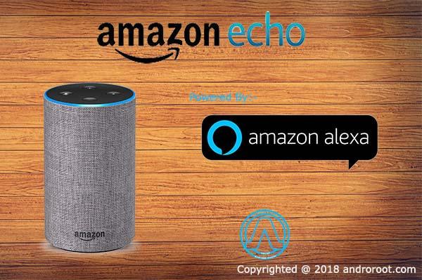Amazon Echo We Observed